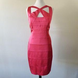 JAX Sheath Plumeria Dress 16 (NWT)